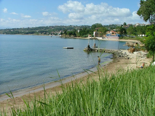 The Black Iris Laguna Beach